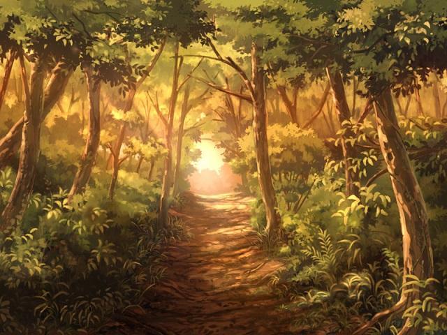 森の道(夕)