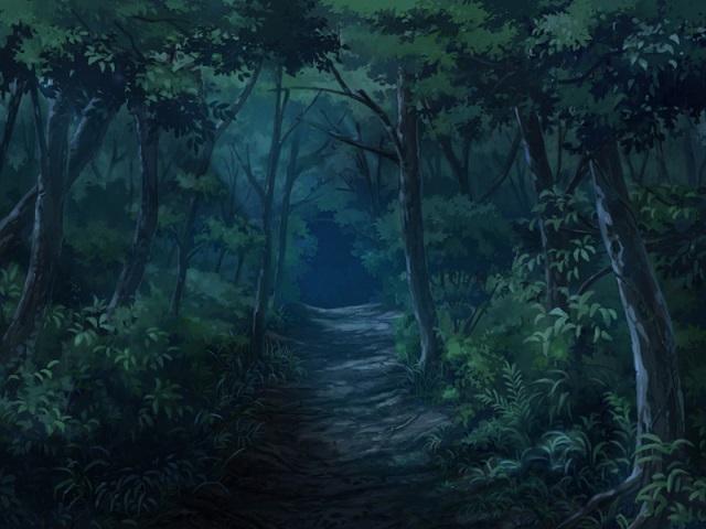 森の道(夜)