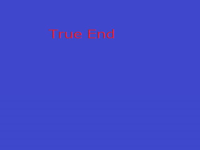 ゲームデーター true end